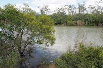 16 Island Cl, Pacific Haven, QLD 4659