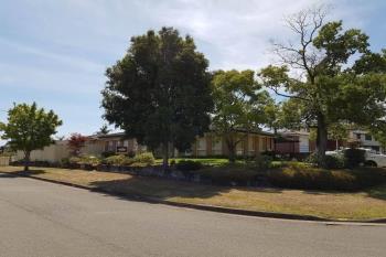 17 Lancia Dr, Ingleburn, NSW 2565