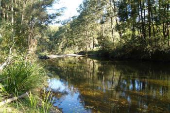 548 Kalang Rd, Bellingen, NSW 2454