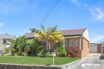 6 Barnes St, Warilla, NSW 2528