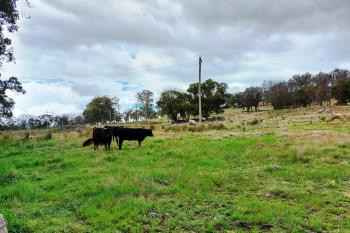 Lot 102 Jenkyn Lane, Uralla, NSW 2358