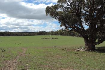 Lot 85 Golspie Rd, Taralga, NSW 2580
