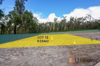 Lot 12 Flitch Ct, Manjimup, WA 6258