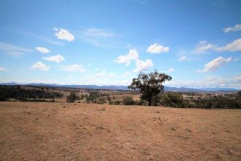 110 Ray Carter Dr, Quirindi, NSW 2343