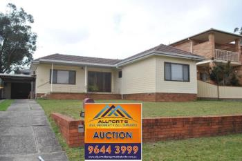 58 Weemala St, Chester Hill, NSW 2162