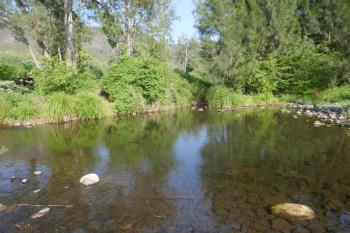 841 Lynchs Creek Rd, Kyogle, NSW 2474
