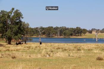 1733 Copeton Dam Rd, Inverell, NSW 2360