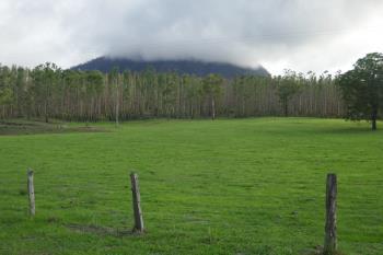 100 Hilderbrand Rd, Kyogle, NSW 2474
