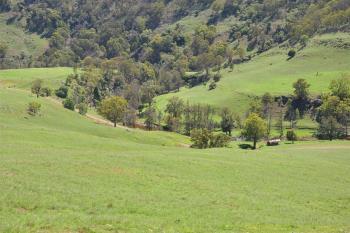 436 Davis Creek Rd, Rouchel V , Aberdeen, NSW 2336