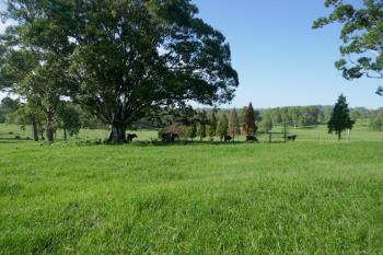 134 Imeson Rd, Kyogle, NSW 2474
