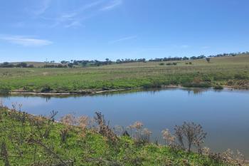 127 Calabash Road Murringo , Young, NSW 2594