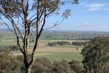 Lot 6 Old Hume Highway (Mundarl , Gundagai, NSW 2722