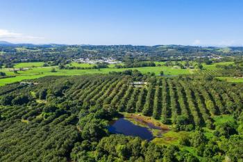 1035C Hinterland Way, Bangalow, NSW 2479