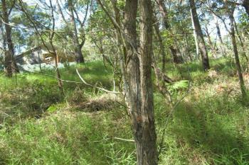 18 Lawson , Russell Island, QLD 4184