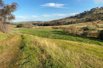 Willowie 5 Mile Creek Rd, Gundagai, NSW 2722
