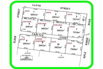 Lot 8 Paddys Park E Rifle Rang Rd, Chinchilla, QLD 4413