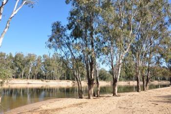 Bushlands Est, Tocumwal, NSW 2714