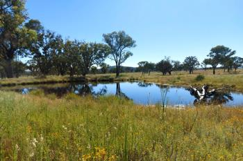 Lot 64 Retreat Rd, Uralla, NSW 2358