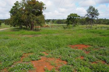 Green Valley Ct, North Isis, QLD 4660