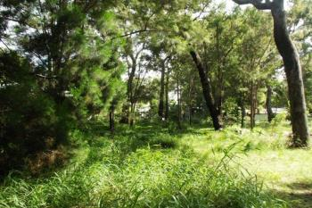 7 Udara Dr, Macleay Island, QLD 4184