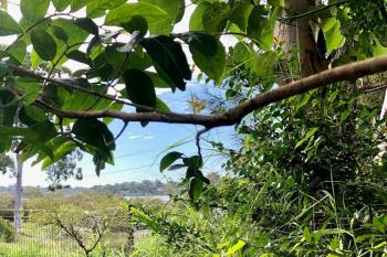 24 The Esp, Karragarra Island, QLD 4184