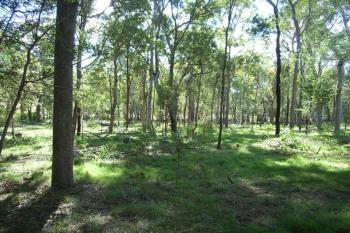 5 Rosedale Rd, Mullett Creek, QLD 4670