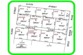 Lot 8 Paddys Park E Rifle Rang Rd, Chinchilla, QLD 4413