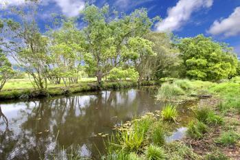 Lot 6, Sta Mclean Subdivision , Bellingen, NSW 2454