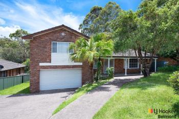 25 Kenton Cres, Valentine, NSW 2280
