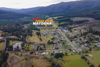 Lot 2 Junee Rd, Maydena, TAS 7140