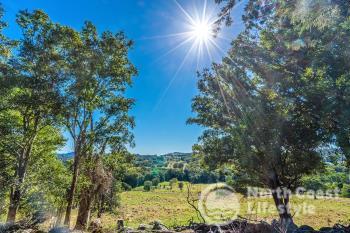 249 Wilsons Creek Rd, Wilsons Creek, NSW 2482
