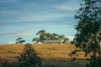 465 Ellangowan Myrtle Creek Rd, Ellangowan, NSW 2470
