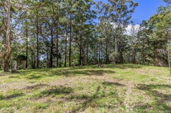 1806 Gold Coast Springbrook Rd, Springbrook, QLD 4213
