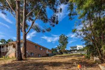 19 Riverview Cres, Catalina, NSW 2536