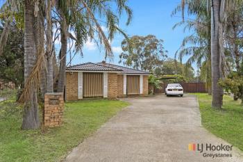 13 Bainton Pl, Doonside, NSW 2767