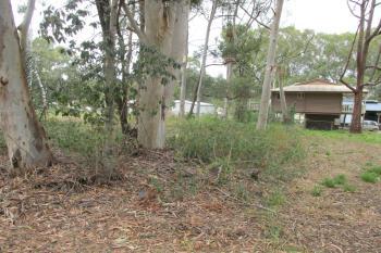 20 Parakeet St, Macleay Island, QLD 4184