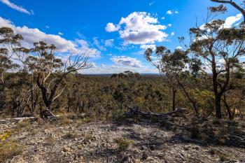 65 Durkin Rd, Windellama, NSW 2580
