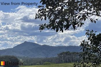 380 Lower Buckra , Buckra Bendinni, NSW 2449