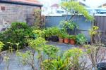 2/29 Toxteth Rd, Glebe, NSW 2037