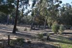 88 Millendale Rd, Lower Boro, NSW 2580