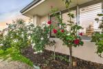29 Wexcombe Way, Aveley, WA 6069