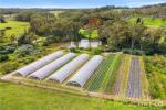 10 Lillicrapps Rd, Mangrove Mountain, NSW 2250