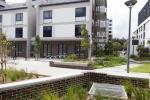 501/16 Hudson St, Lewisham, NSW 2049