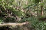 33 Costellos Rd, Doon Doon, NSW 2484