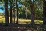 8 Orara Lane, Mortons Creek, NSW 2446