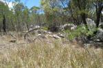 2275 Torrington Rd, Torrington, NSW 2371
