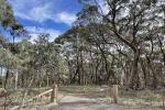 1264 Wombeyan Caves Road, Wiar , Taralga, NSW 2580