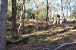 341 Promiseland Rd, Cordalba, QLD 4660
